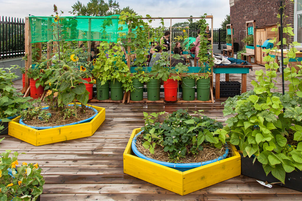 Colorful Planters In Terrace Gardens